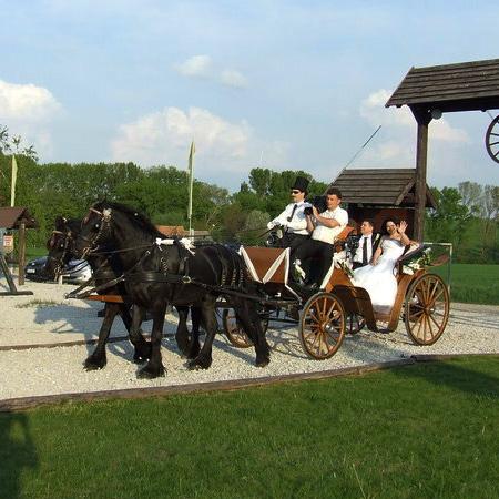 svadba na ranèi